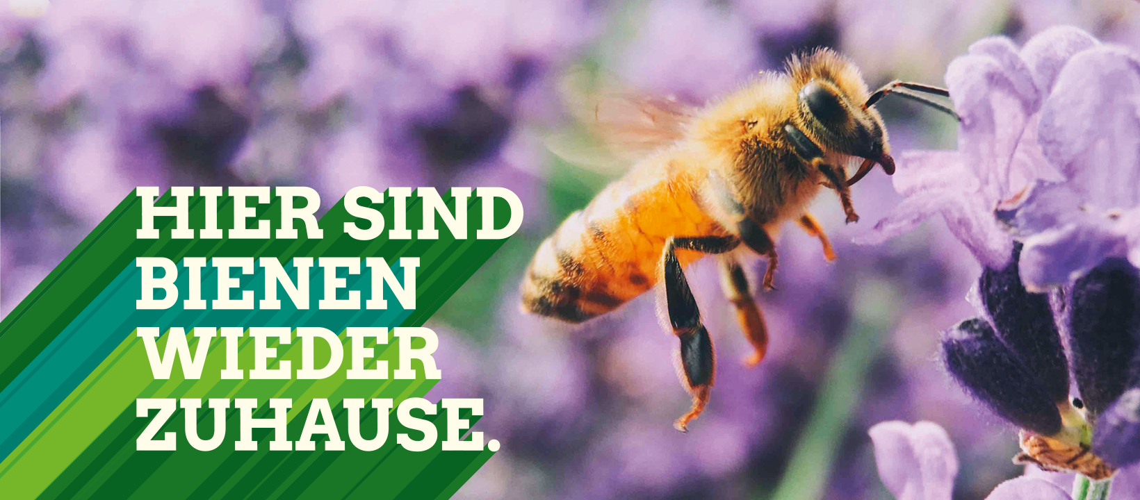 Flyer: Kreistagswahlkreis VII