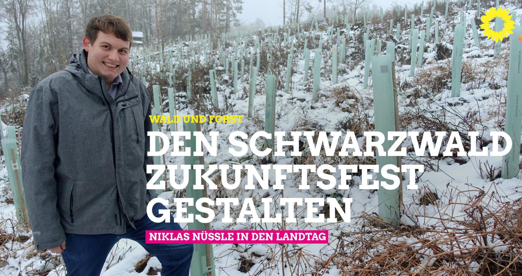 Wald und Forst: Den Schwarzwald zukunftsfest gestalten